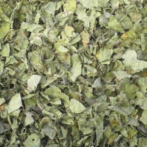 asiatica-dried-leaves